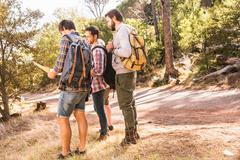Four male hiking friends planning with map in forest, Deer Park, Cape Town, Stock Photos