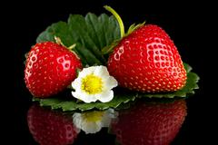 Macro whole strawberries with leaf and flower isolated on black background Stock Photos