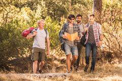 Four male hikers hiking through forest, Deer Park, Cape Town, South Africa Stock Photos