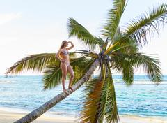 Young woman standing looking out from palm tree at beach, Dominican Republic, Stock Photos