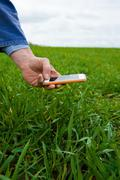 Hand of farmer photographing field crop on smartphone Stock Photos