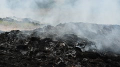 Smoke and fire burning pile of grass. Stock Footage