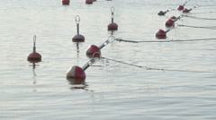 Bouys floating in the sea port in Parnu Stock Footage