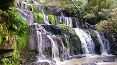 Purakaunui Waterfall, The Caitlins, NZ. Beautiful cascading water, pan down. Stock Footage