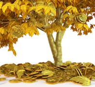 money tree with coin's on isolate white background close up 3d illustration - stock illustration