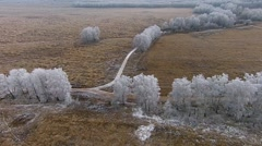 Aerial Video of Winter Landscape With Trees in Frost Stock Footage