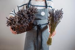 Beautiful girl on the lavender field. Young woman collects  in a basket. Summer Stock Photos