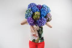Hand holding a bunch blue color hydrangea white background. bright colors Stock Photos