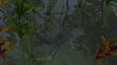 Dead Body Under Water Stock Footage