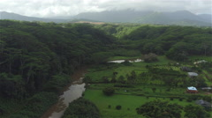 AERIAL: Beautiful view of small agricultural valley in the middle of vast jungle - stock footage
