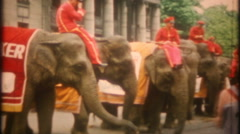 Circus parade on main street camels and elephants - 3373 vintage film home movie Stock Footage