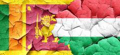 Sri lanka flag with Hungary flag on a grunge cracked wall Stock Illustration