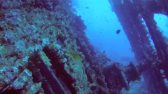 Inside the wreck of the SS Carnatic, Red sea, Egypt Stock Footage