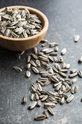Unpeeled sunflower seeds. Stock Photos