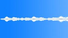Ocean Ambient Waves (Seagulls) Sound Effect