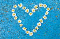Heart shape formed from daisy flowers on an old texture light blue background - stock photo