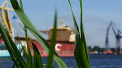 Bulk carrier grass Stock Footage