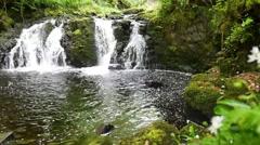 Waterfall in glenariff forest park, northern ireland Stock Footage