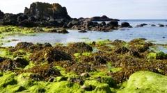Ballintoy coastal area, Northern Ireland Stock Footage