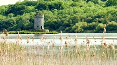 Crichton Tower on Gad Island in Lough Erne, Northern Ireland - stock footage
