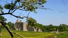 Inch Abbey ruin, Northern Ireland Stock Footage