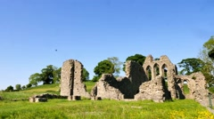Inch Abbey ruin, Northern Ireland - stock footage