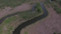 4k aerial over a marsh Stock Footage