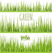 Set realistic green grass lawn - stock illustration