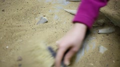 Hands of two girls digging together bones of dinosaurs in sand Stock Footage
