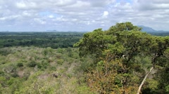 View to the jungle from the Sigiriya rock fortress in Sri Lanka. Stock Footage