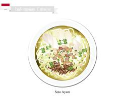 Soto Ayam or Indonesian Rice Noodle Soup with Chicken - stock illustration