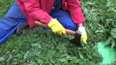 Gardener chopping nettles with ax Stock Footage