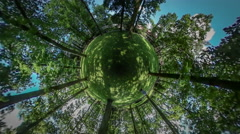 360Vr Video Man is Walking in Botanic Garden Green Lawn Park Looking Around Stock Footage