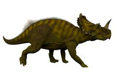 Centrosaurus Side Profile - stock illustration