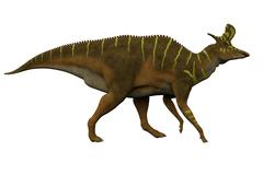 Lambeosaurus Side Profile - stock illustration