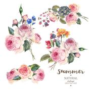Set vintage floral vector bouquet of English roses - stock illustration
