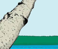 Forest lake with birch tree in foreground - stock illustration