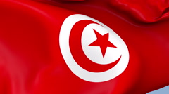 Tunisia Waving Flag Background Loop - stock footage
