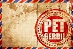 pet gerbil - stock illustration