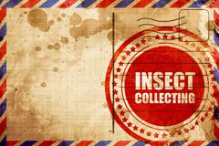 Insect collecting Stock Illustration