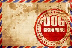 dog grooming - stock illustration