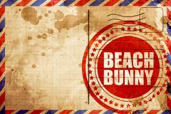 Beach bunny Stock Illustration
