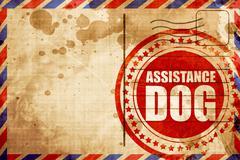 Assistance dog Stock Illustration