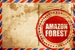 amazon forest - stock illustration