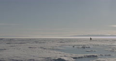 Pan from photographer to glacier in sea ice Stock Footage