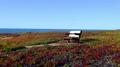 Empty bench facing the sea Stock Footage