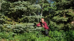 Hunter in thick trees kneels down and takes aim Stock Footage