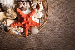 Background with shells and starfish and with blank space for your logo or tex - stock photo