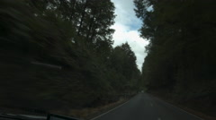 Driving Through Forest, Dashcam Stock Footage