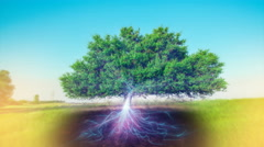 Tree of life with magic roots visualization hologram - stock footage
